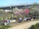 都市農業公園.JPG